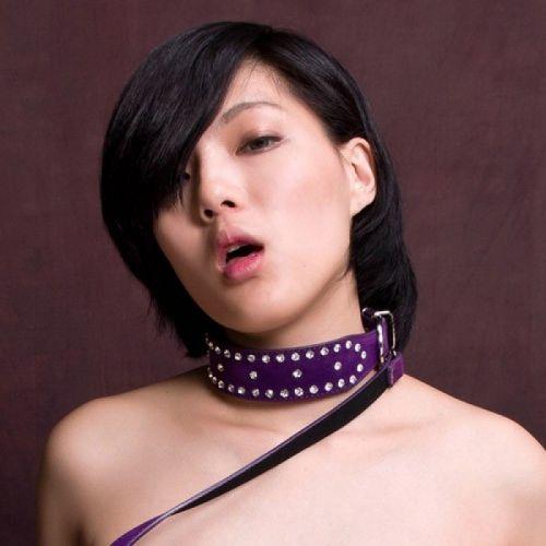 Фиолетовый ошейник с поводком и стразами