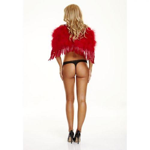 Малые красные крылья из перьев Sweetheart